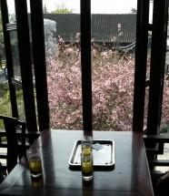 Im Teehaus des Gartens Liu Yuan 留园, Suzhou, Provinz Jiangsu (2008)