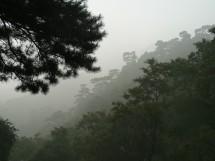 Am Tai Shan 泰山, Provinz Shandong (2009)