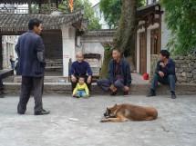 Im Dorf Furong Cun 芙蓉村 bei Wenzhou, Provinz Zhejiang (2012)