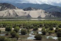 Im Tal des Tsangpo nahe Samye, Tibet (2014)