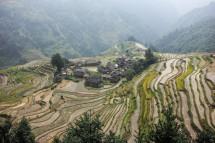 Miao-Dorf, Guizhou (2016)