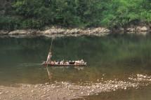 Ziegenfähre, Provinz Guizhou (2017)